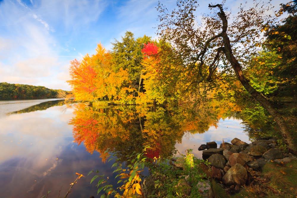 brunet-island-state-park